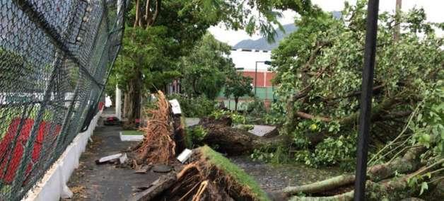 Temporal no Rio devasta e fecha sede do Flamengo, na Gávea