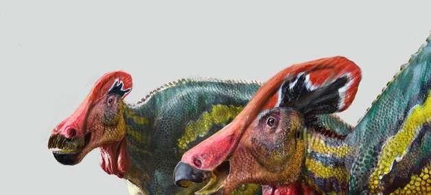 Descoberto dinossauro 'falante' no México