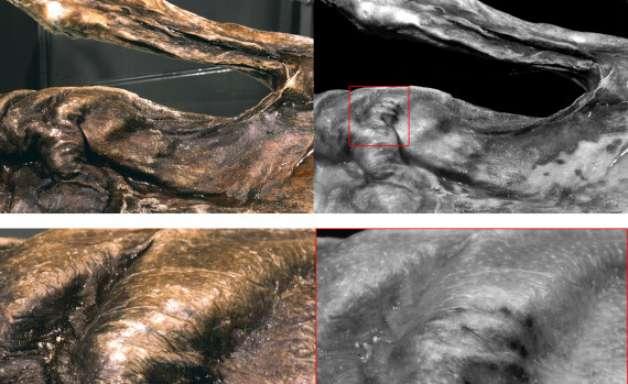 """Tatuagem estranha é encontrada em múmia de """"homem do gelo"""""""