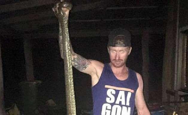 Austrália: mãe salva filho de ataque de cobra de três metros