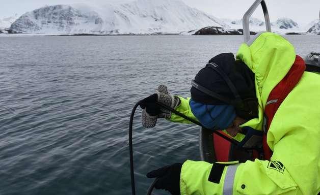 Covid-19: estudo analisa impacto do 'momento único de silêncio' nos oceanos provocado pela pandemia