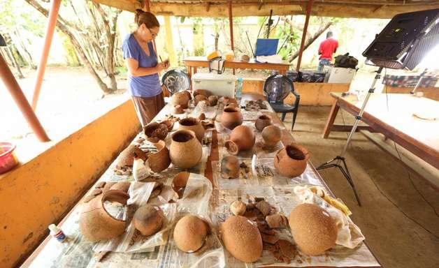 Achada 1ª evidência de caça ao mel pré-histórica no oeste da África
