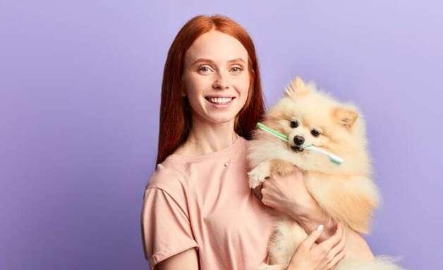 Escovar os dentes do cachorro é mesmo necessário?