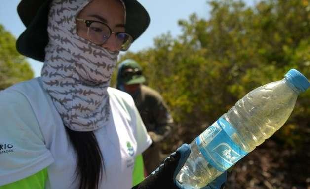 Cientistas desenvolvem instrumento de combate à poluição de plástico em Galápagos