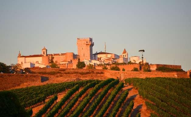 Conheça três vinícolas do Alentejo para quando as viagens voltarem à rotina