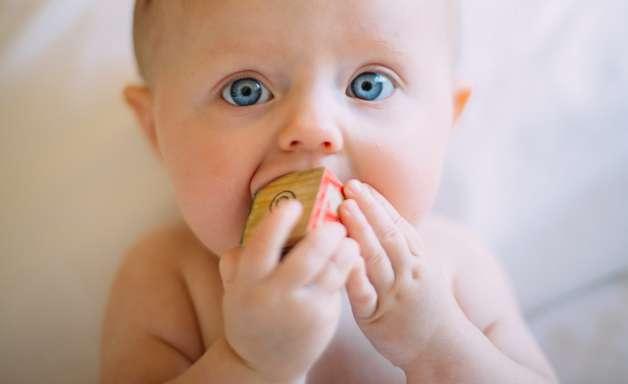 Como os bebês sentem medo? A resposta passa pelas bactérias