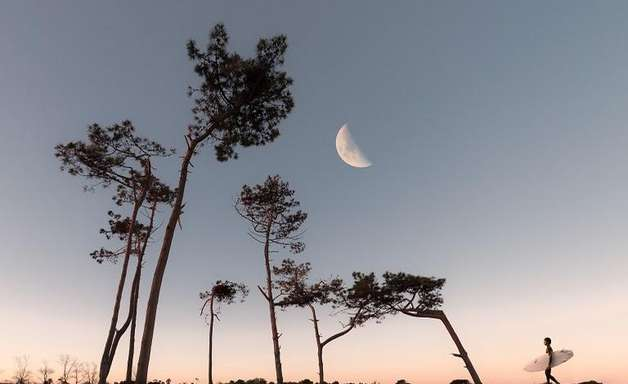 Lua Crescente em Virgem: mantra para cada ascendente