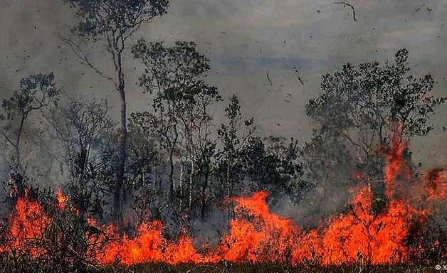 Previsões mais pessimistas para Amazônia já se confirmam