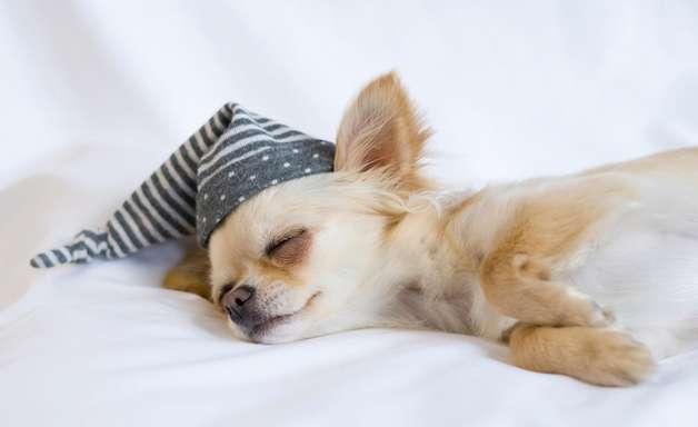 3 passos para ter uma noite de sono mais tranquila