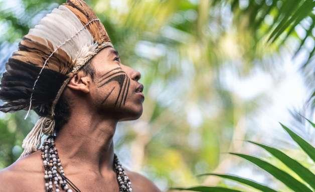 Áreas mais preservadas do Brasil são as terras indígenas