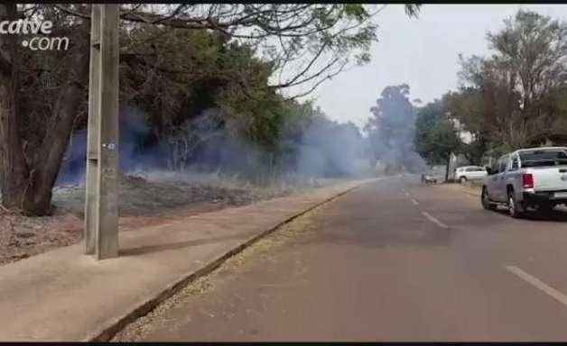 Área de preservação é queimada no início da tarde, no Santa Cruz