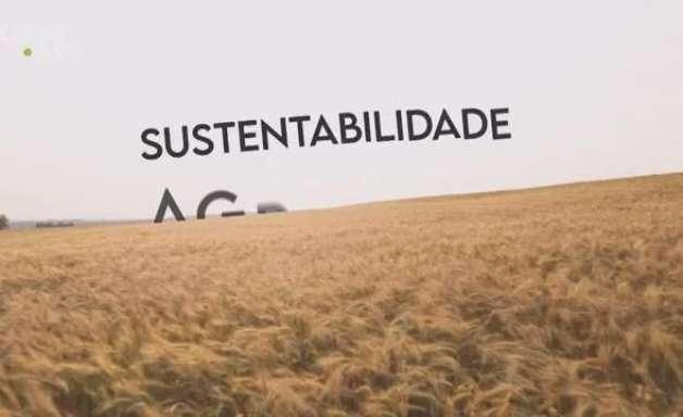 Mais de 50 municípios do Oeste do Paraná são sustentados pela economia de base rural