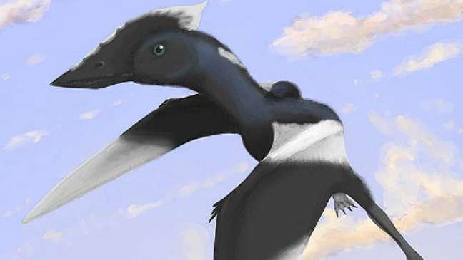 Nova espécie de dinossauro leva nome de menina que achou fóssil