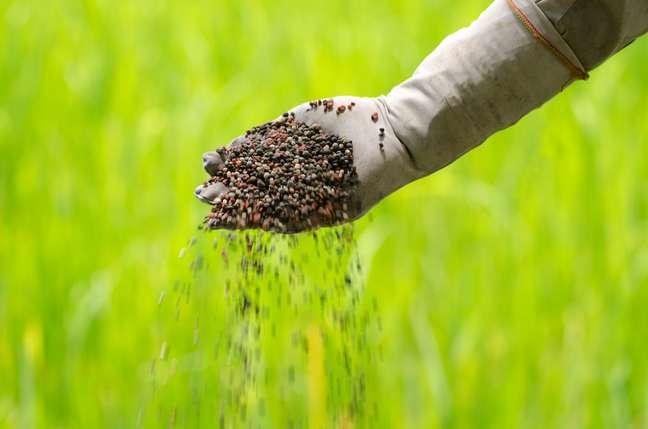Venda de fertilizantes deve atingir o pico no segundo semestre do ano