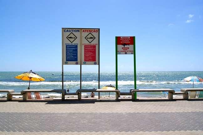 <p>O litoral do Recife é o ponto que mais sofre de ataques de tubarão em toda aAmérica do Sul</p>