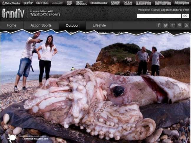 Pessoas observam corpo do animal encontrada em praia na Espanha. A imagem, feita com uma lente grande-angular, tem os cantos distorcidos na tentativa de capturar uma visão mais aberta do achado