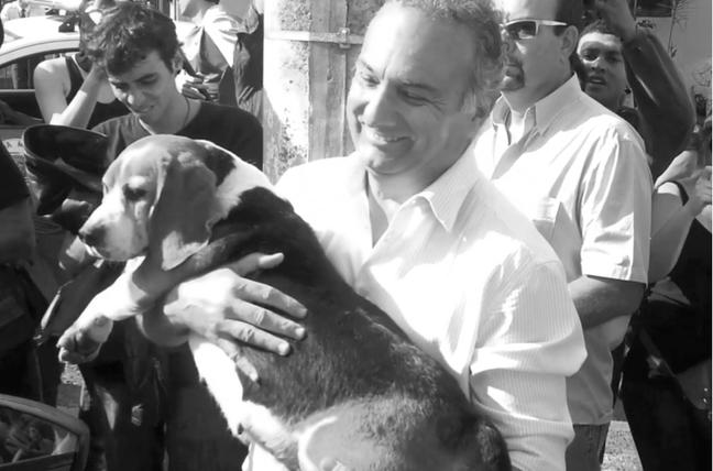 Deputado se tornou responsável pelas cadelas até decisão da Justiça