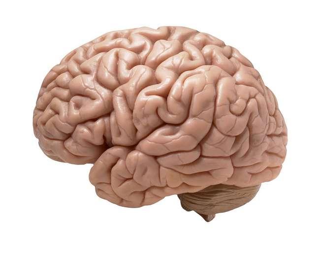 """<p>Máquina possui uma espécie de """"cérebro eletrônico"""" quedeciframensagens enviadas por ondas cerebrais humanas</p>"""