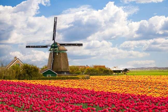 O itinerário também desbrava a região na época de florescimento das tulipas