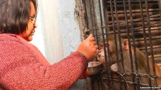 <p>Shabista alimenta Chunmun com leite, frutas e alimentos cozidos</p>