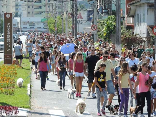 <p>Famílias passearam com seus cães de estimação pelas ruas da cidade</p>
