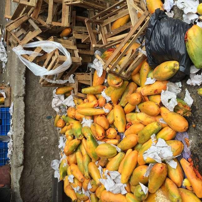 1,3 bilhões de toneladas de alimentos são desperdiçados anualmente segundo relatório da FAO/ONU