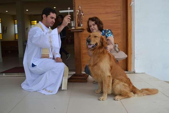 O golden Jhonny e sua dona, Fátima