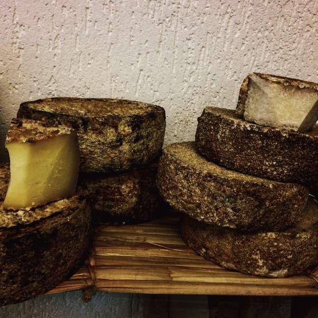 De acordo com a Portaria n.º 5/83, do Ministério da Agricultura, que trata dos critérios de inspeção do leite e produtos lácteos, o queijo com prazo de comercialização ultrapassado poderá ser reaproveitado