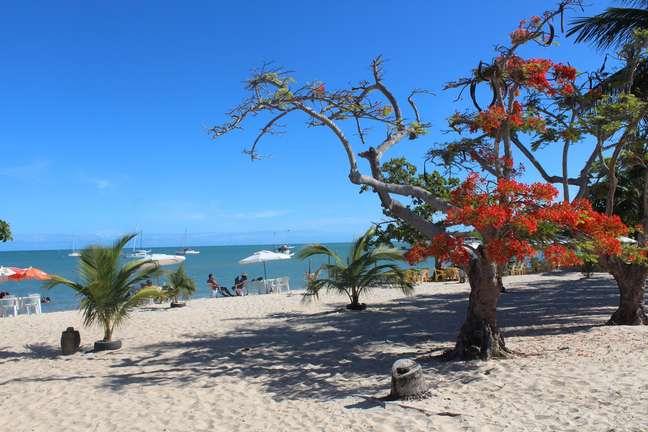 As praias de Coroa Vermelha também são opções para quem visita a cidade