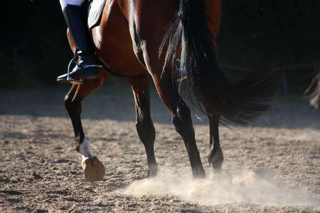 Mesmo com um cavalo cego de um olho, Justo Botelho Santiago se classificou na prova de equitação