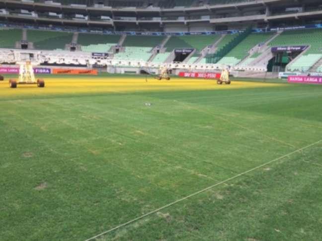 Gramado do Allianz Parque tem ficado com falhas após a realização de shows na arena
