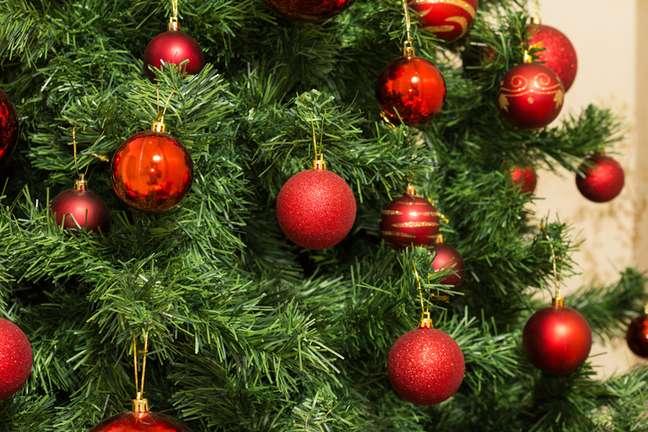 As bolas colocadas nos pinheiros de Natal representam os frutos da vida humana e seus desejos, tais como amor, esperança, perdão e alegria.