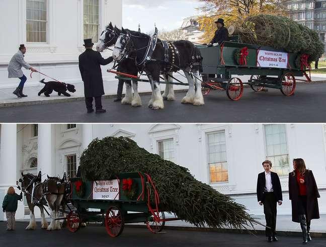 Chegada da árvore de Natal foi antecipada pelos Trump