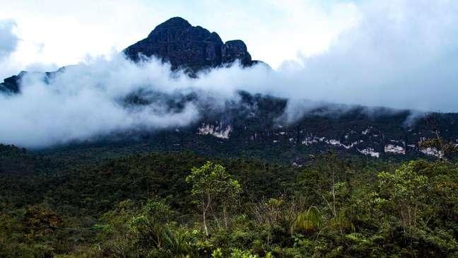 Pico da Neblina é um tepui, uma das formações mais antigas da Terra