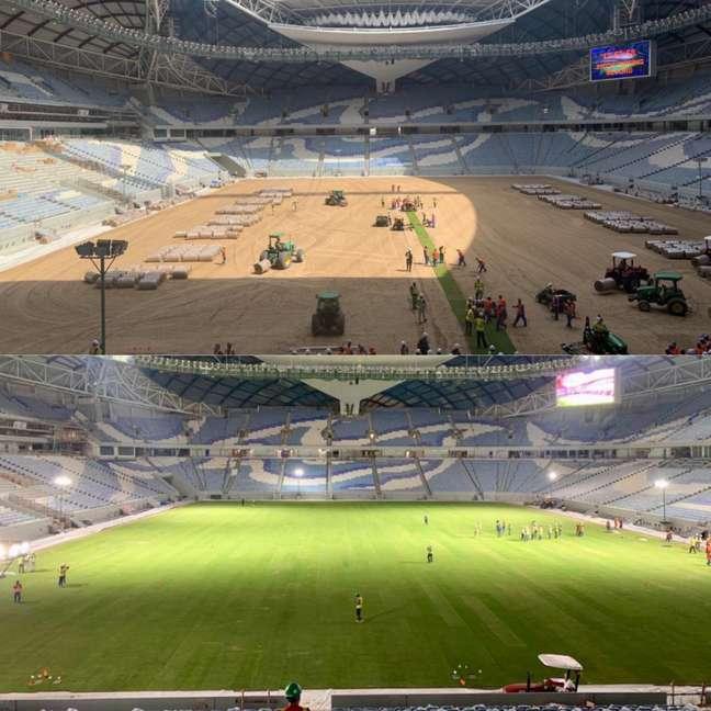 Qatar quebra recorde na instalação do gramado em estádio da Copa (Foto: Reprodução / Twitter)