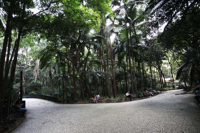 O Parque Trianon, em São Paulo