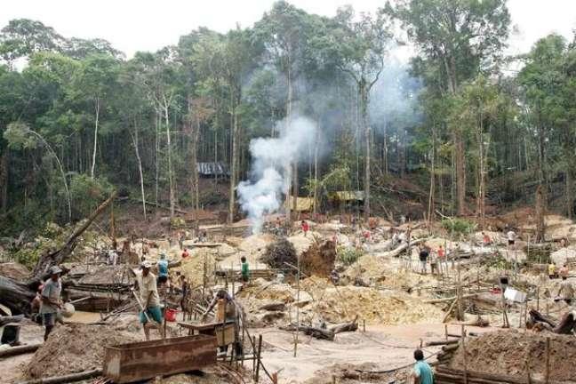 Desmatamento na Amazônia cresce e põe em risco acordo com UE