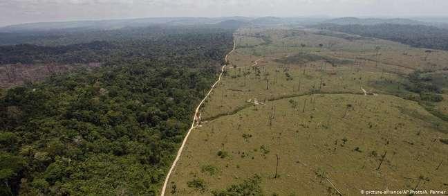 Dados do Inpe mostram que em julho a devastação na Amazônia cresceu 278% em relação ao mesmo mês de 2018