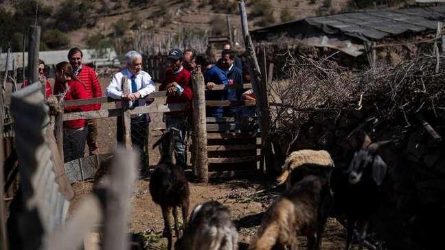 'Estamos fazendo todos os esforços para que essa seca, que nos atinge há tanto tempo, não signifique mais sofrimento', afirmou o presidente chileno Sebastián Piñera durante uma visita à cidade de Punitaqui