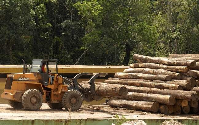 Trator carrega troncos de árvores cortados de maneira ilegal na Amazônia