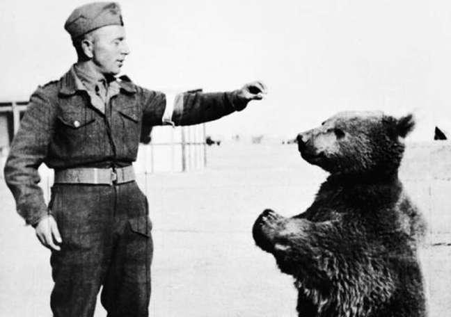 """""""Adotado"""" por um pelotão do exército polonês, o urso Wojtek ficou tão próximos dos soldados que ganhou ranking militar"""