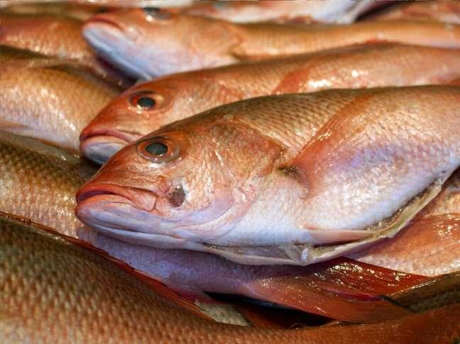 Guia da Cozinha - Saiba quais cuidados ter ao comprar peixe para a Sexta-Feira Santa