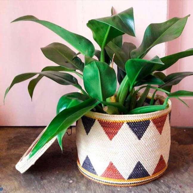 39. Decore sua casa com lindas plantas – Via: Pinterest