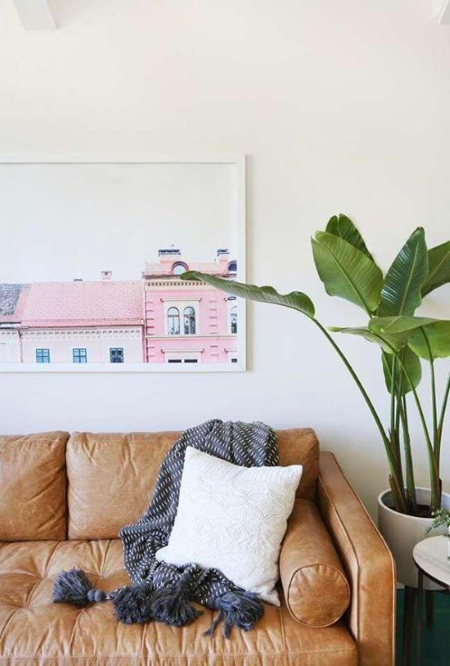 13. Pacová ao lado do sofá de casa – Via: Pinterest