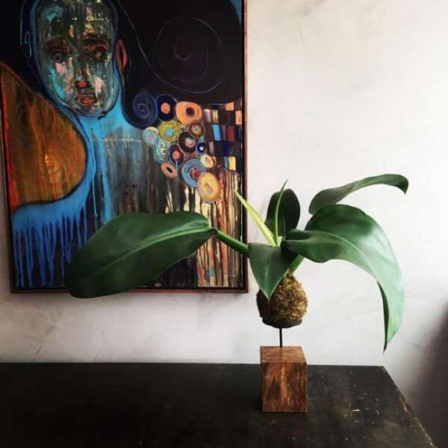 17. Planta pacová kokedama – Via: Pinterest