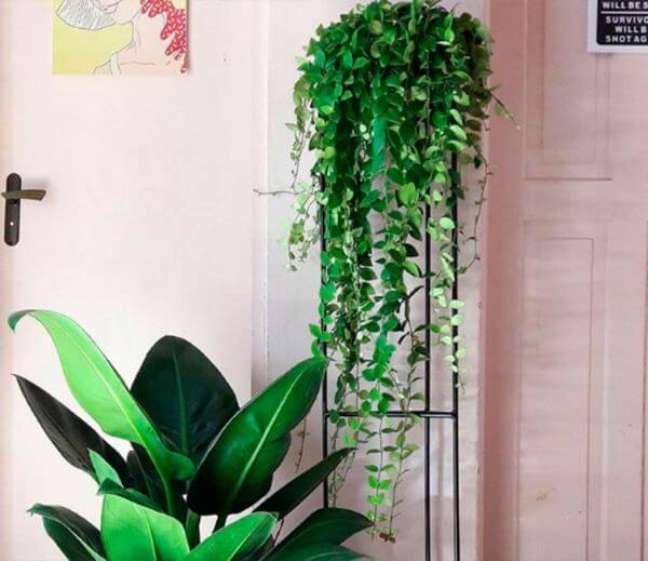 20. Planta pacová na decoração de casa – Via: Coisas de Diy