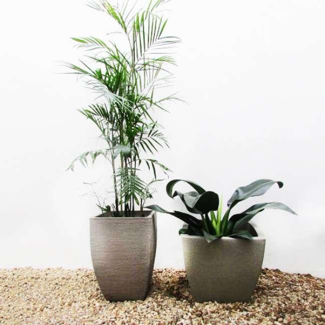 31. Vaso de plantas modernas na decoração de casa – Via: Toke Verde