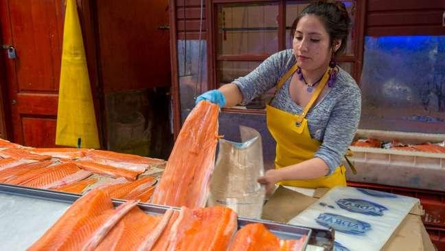 As vendas de salmão desabaram na China