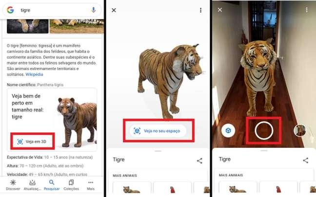 """No aplicativo de buscas do Google, pesquise o nome de um animal, acesse o modelo em 3D dele e, em seguida, toque em """"Ver no seu espaço"""". Você pode tirar fotos com o animal e até filmar em realidade aumentada."""