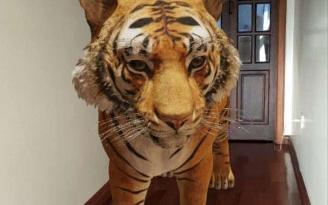 O tigre é um dos animais que podem ser visualizados em 3D e em realidade aumentada pelo aplicativo de pesquisas do Google no celular.
